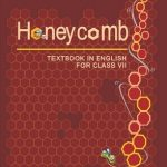 Honey Comb - English VII