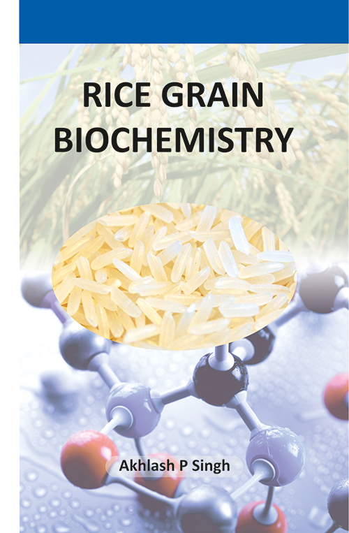Rice Grain Biochemistry by Akhlash P Singh